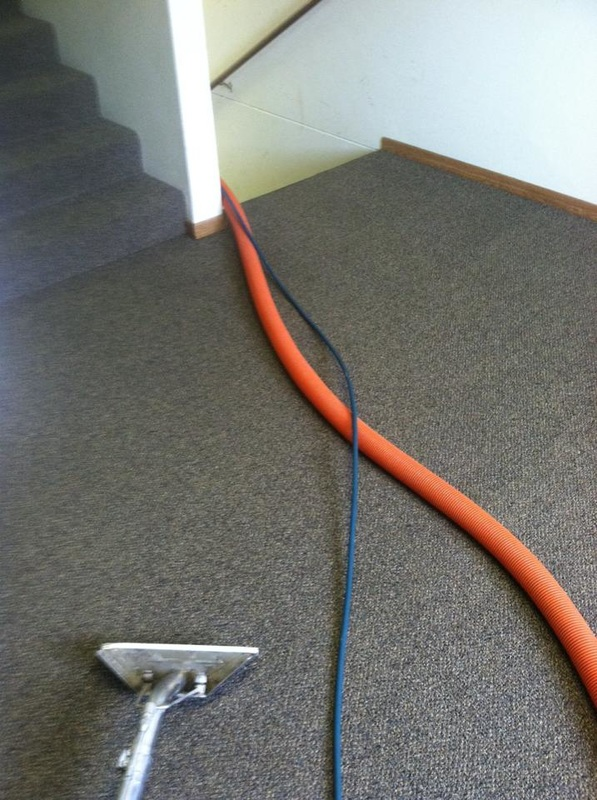 carpet cleaning commercial building